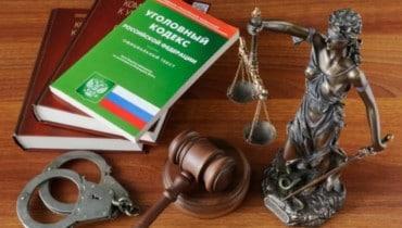 Лица в погонах: пенсионерку снова судят за сопротивление племяннику-рецидивисту