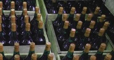 Более 6000 литров нелегального алкоголя изъято в Геленджике за три дня