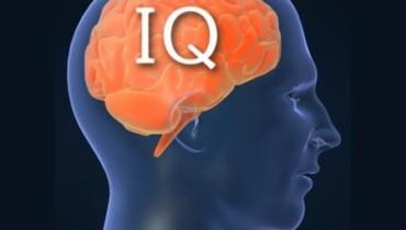 IQ человечества неуклонно снижается