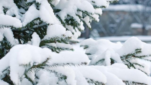 снегопад в краснодаре
