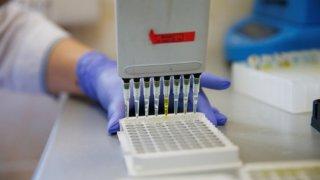 На Кубани подвели промежуточные итоги масштабной вакцинации от COVID-19