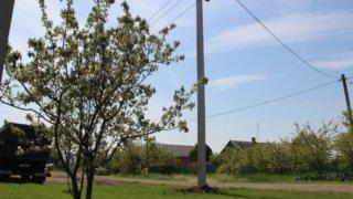 В четырех районах Кубани обеспечили электроэнергией 280 новых потребителей