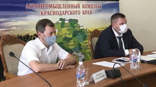 Кубанские парламентарии приняли участие в селекторном совещании Минсельхоза РФ