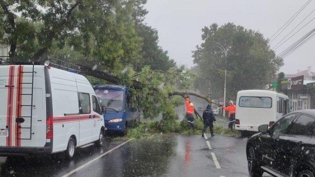 Годовая норма осадков выпала на Черноморском побережье Кубани за несколько часов
