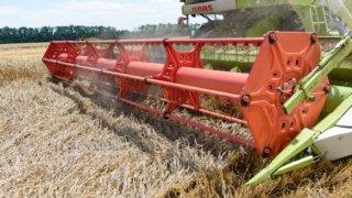 Урожай зерна ГК «Концерн «Покровский» превысил 730 тысяч тонн