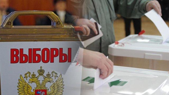 Центр общественного наблюдения готов принять желающих следить за выборами в Краснодарском крае